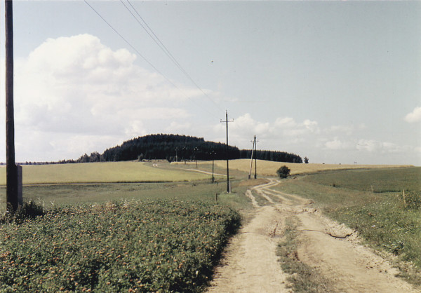 """""""Svinčák"""" nebo také """"Prasečák"""". Snímek z let 1957-58. Na snímku zachycena původní nejrozsáhlejší část lesa. Původní cesta a družstevní lány."""